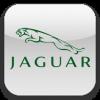 Защита радиатора JAGUAR