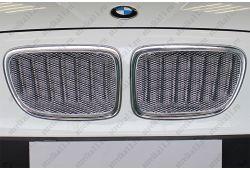 BMW X1 I 2009-2012г.в. - Защита радиатора ПРЕМИУМ