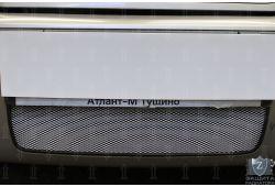 SKODA OCTAVIA I рестайлинг 2000-2010г.в. - Защита радиатора СТАНДАРТ